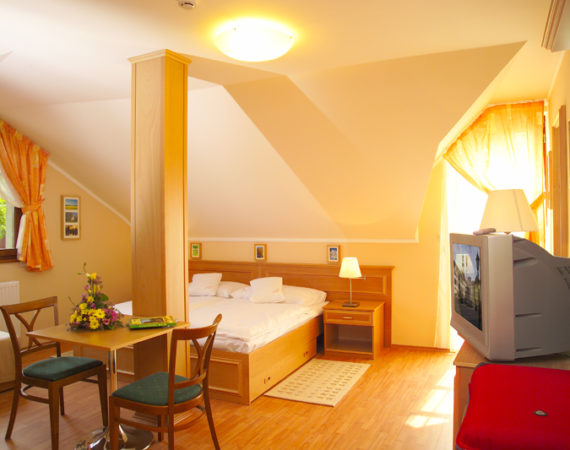 Early booking discount, Madach room