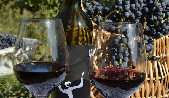 Wine-journey!